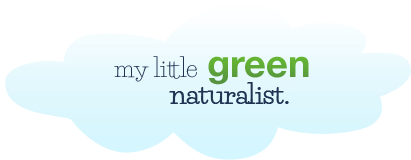 my little green naturalist