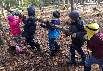 kids moving branch in woods
